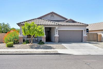 Laveen Single Family Home For Sale: 8810 S 57th Lane