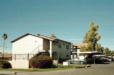 Mesa Multi Family Home For Sale: 260 8th Avenue #2