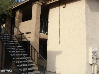Mesa Multi Family Home For Sale: 260 8th Avenue #13