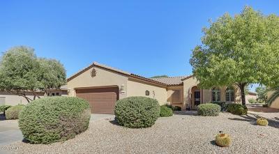 Surprise Single Family Home For Sale: 17824 W Calistoga Drive