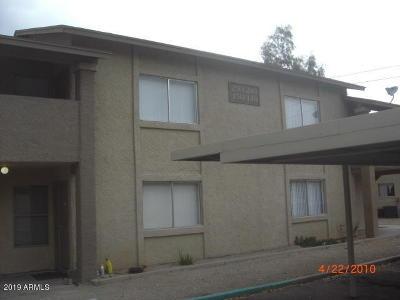 Mesa Multi Family Home For Sale: 260 8th Avenue #25