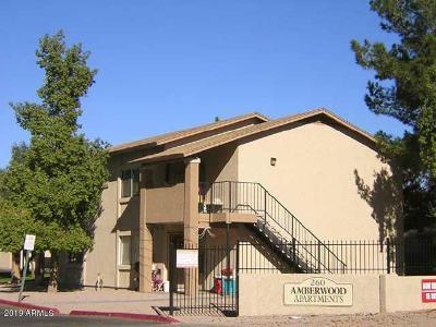 Mesa Multi Family Home For Sale: 260 8th Avenue #4