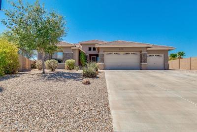 Mesa,  San Tan Valley,  Queen Creek, Gold Canyon Single Family Home For Sale: 31022 N Gecko Trail