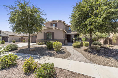 Chandler Single Family Home For Sale: 4830 S California Place
