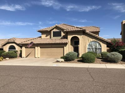 Cave Creek Single Family Home For Sale: 4528 E Fernwood Court