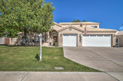 Mesa Single Family Home For Sale: 1643 N Sunview Drive