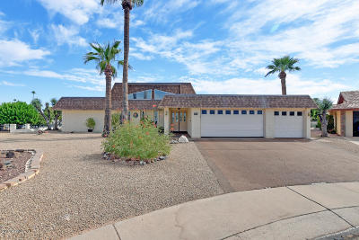 Sun City Single Family Home For Sale: 13605 N Tan Tara Point