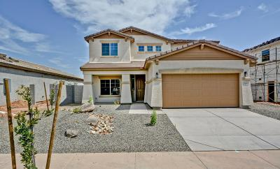 Surprise Single Family Home For Sale: 26313 N 165th Lane