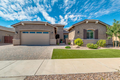 Queen Creek Single Family Home For Sale: 20048 E Kestrel Street