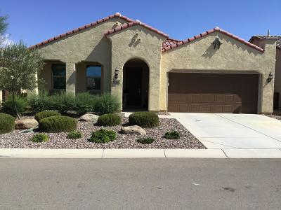 Florence Single Family Home For Sale: 7184 W Noble Prairie Way