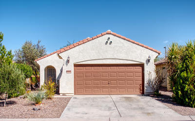 Florence Single Family Home For Sale: 3843 N Hidden Canyon Drive