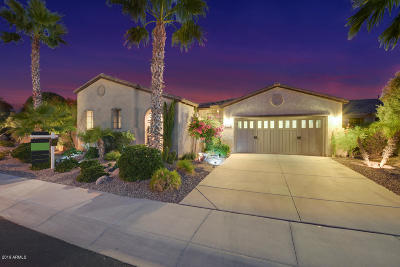 Peoria Single Family Home For Sale: 12381 W Fetlock Trail