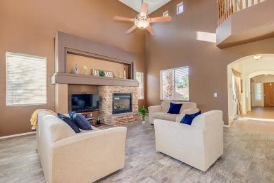 Maricopa Single Family Home For Sale: 42461 W Oakland Drive