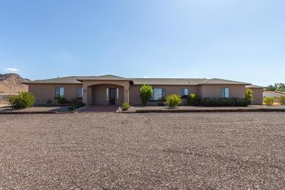 Apache Junction, Chandler, Gilbert, Mesa, Queen Creek, San Tan Valley Single Family Home For Sale: 19919 E Stacey Road