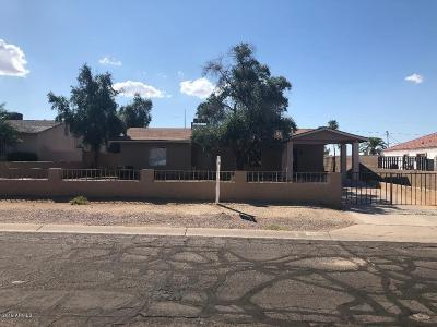 Phoenix Single Family Home For Sale: 8436 S 9 Th Street S