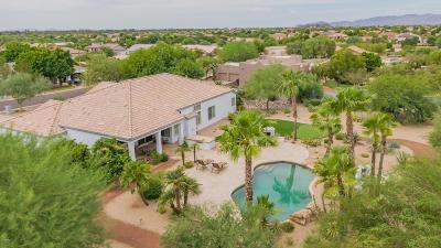 Litchfield Park Single Family Home For Sale: 12918 W San Juan Avenue