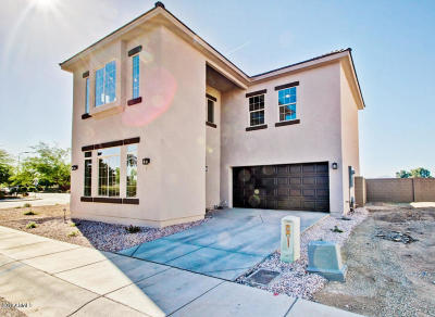 Phoenix AZ Single Family Home For Sale: $245,000