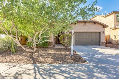 Phoenix Single Family Home For Sale: 1862 W Fetlock Trail