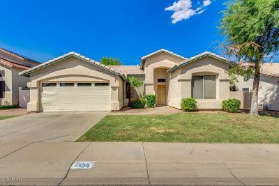 Phoenix Single Family Home For Sale: 324 W Helena Drive