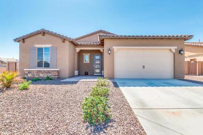Surprise Single Family Home For Sale: 15975 W Sierra Street