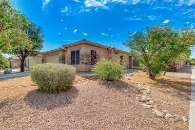 Queen Creek Single Family Home For Sale: 2183 W Allens Peak Drive