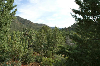 Pine Residential Lots & Land For Sale: 49 Ruin Hill Loop