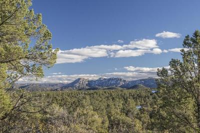 Payson AZ Residential Lots & Land For Sale: $850,000