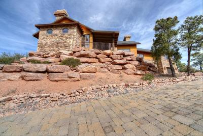 Chaparral Pines Single Family Home For Sale: 2910 E Chuparosa Circle