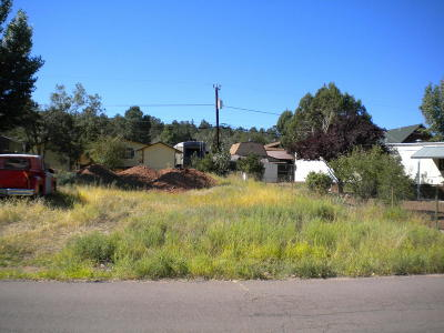 Payson Residential Lots & Land For Sale: 903 W Bridle Path Lane