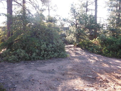 Pine Residential Lots & Land For Sale: Lot 142 Ruin Hill Loop