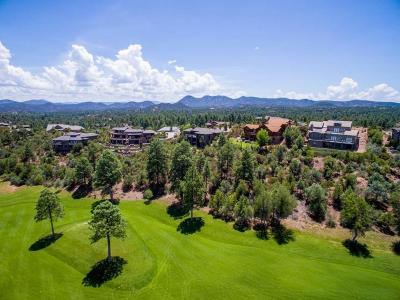 Payson AZ Single Family Home For Sale: $869,900