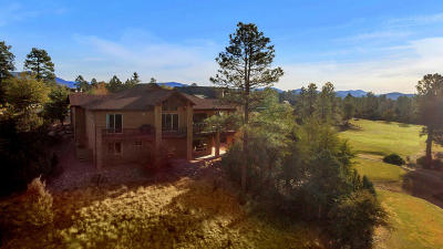 Chaparral Pines Single Family Home For Sale: 2309 E Scarlet Bugler Circle