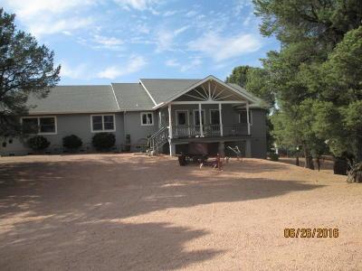 Payson Single Family Home For Sale: 1010 E Canyon Dr