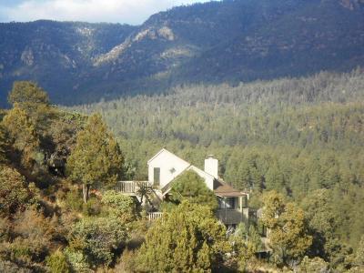 Pine AZ Single Family Home For Sale: $259,000