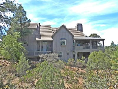 Chaparral Pines Single Family Home For Sale: 2214 E Filaree Circle