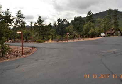 Pine Residential Lots & Land For Sale: Lot 96 Kachina Circle