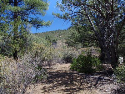 Pine Residential Lots & Land For Sale: 1T Arrowhead Canyon
