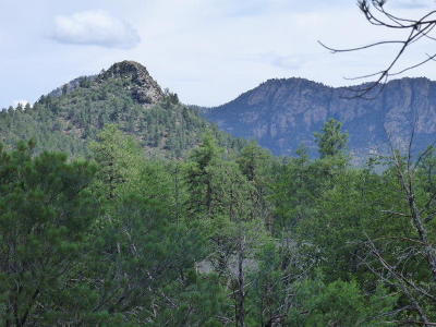 Star Valley Residential Lots & Land For Sale: 55 W Monument Trail
