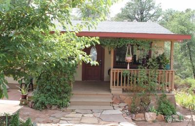 Payson Single Family Home For Sale: 602 N Granite Drive