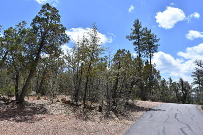 Pine Residential Lots & Land For Sale: 3479 N Wilderness Trail
