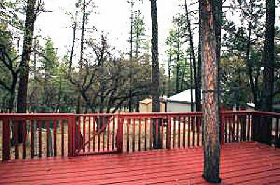 Pine Single Family Home For Sale: 3769 Bloody Basin Road