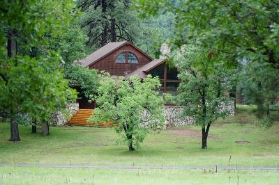 Payson Single Family Home For Sale: 204 S Rocking G Ranch Road