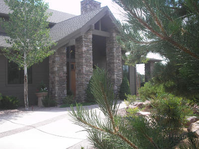 Chaparral Pines Single Family Home For Sale: 1001 N Indian Paintbrush Circle