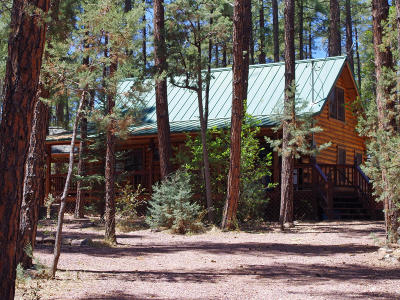 Payson Single Family Home For Sale: 442 S Canyon Drive