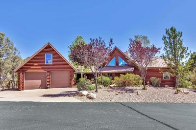 Chaparral Pines Single Family Home For Sale: 1204 N Indian Paintbrush Circle