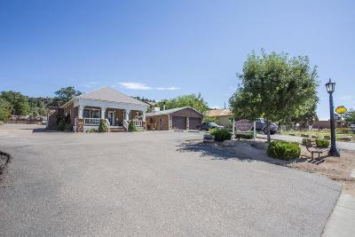 Payson Single Family Home For Sale: 5 W Main Street