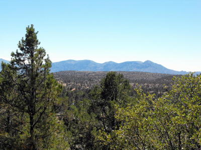 Payson Residential Lots & Land For Sale: 802 N Oak Point