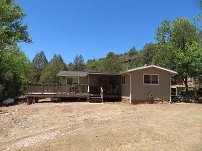 Payson Single Family Home For Sale: 1449 W Paint Pony Drive
