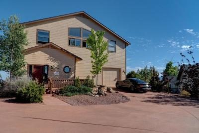 Payson Single Family Home For Sale: 1301 W Aviator Circle