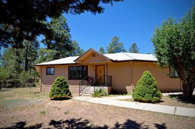 Payson Single Family Home For Sale: 1193 W Standage Drive